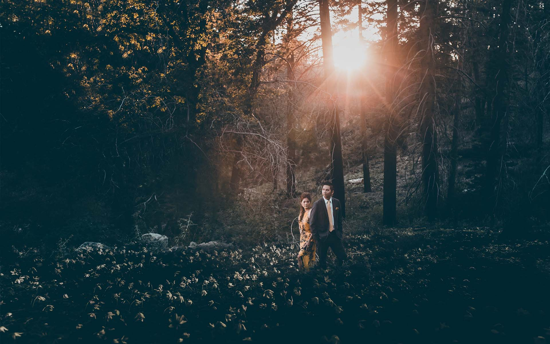 Forest sunset engagement session in San Bernardino Mountains by Lake Arrowhead