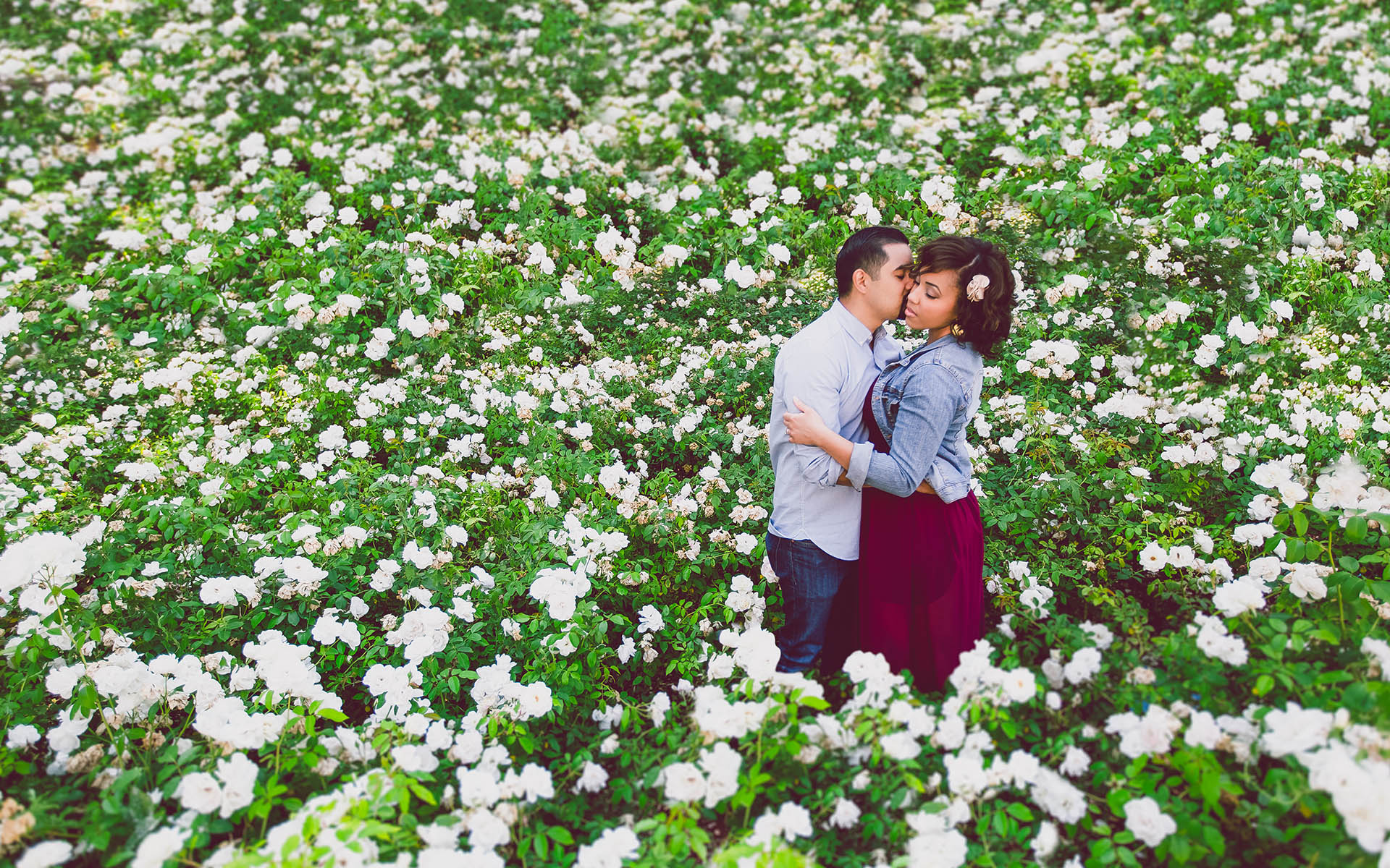 man kissing fiance in rose garden at chapman university